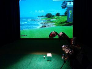 NexGen Indoor Golf Center